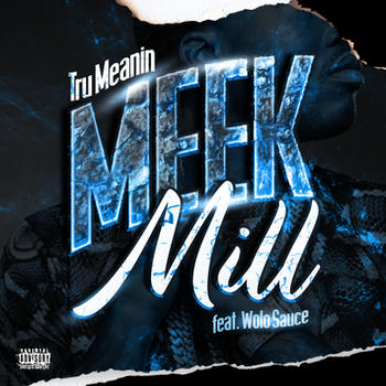 Meek Mill cover art.jpg