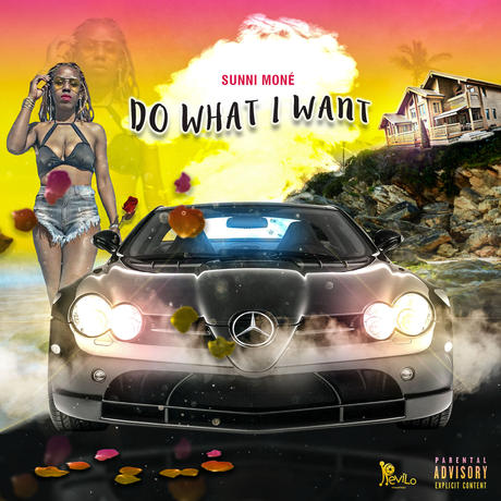 Do What I Want Cover_PROOF_1.jpg