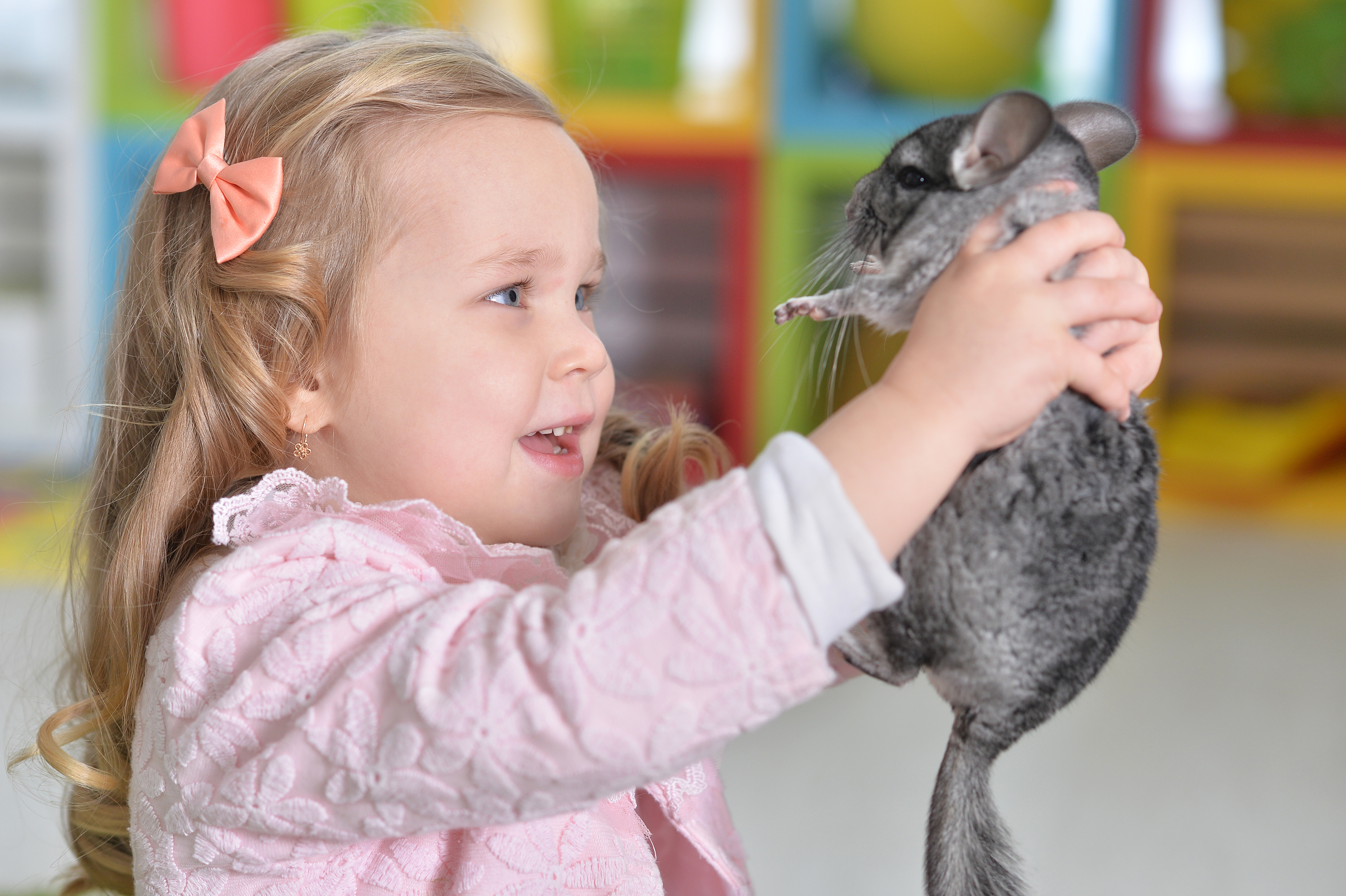 magic show with small animals