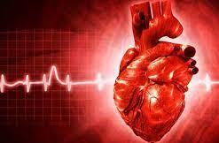 Doença cardíaca e atividade física