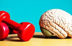 Benefícios da atividade física nas disfunções do sistema nervoso