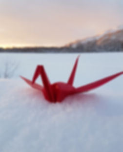 Origami Crane in Snow