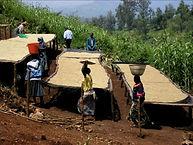 Rwandakivubeltlot16cyiyagp.jpg