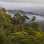 Nicaragua-san-juan-landscape2-400x400.jp