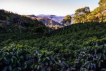 Boliviacaranavi-04.jpg