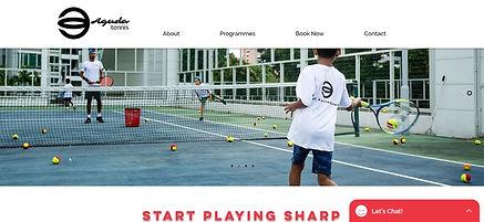 Aguda Website screenshot.JPG