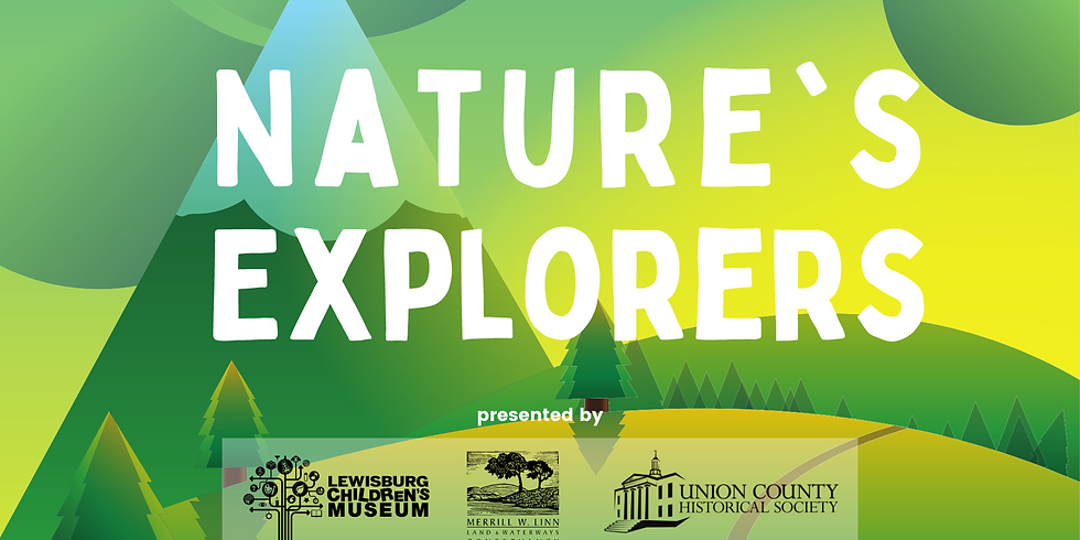 Nature's Explorers: Birds