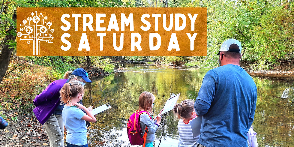 Stream Study Saturday