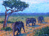 Elephant Trail