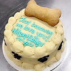 Dog Cake 1 biscuit