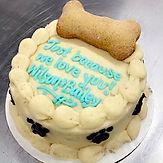 Dog Cake 1 biscuit