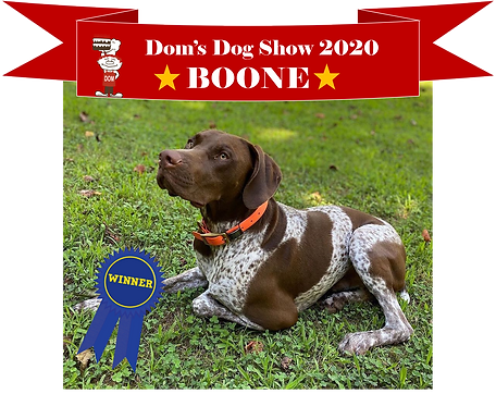 Boone_winner.png