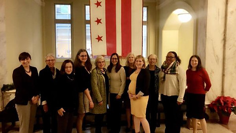 DC Maternal Mortality Review Committee