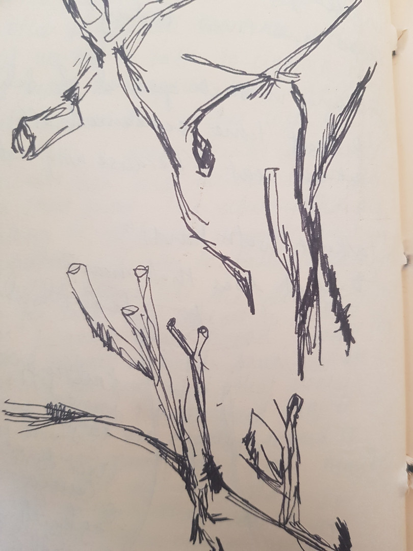 Sketches of Sticks, 2020