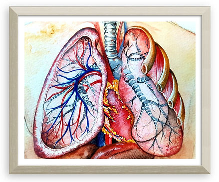 Lung study