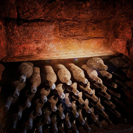 Treasure Hunter 3D detector wine cellar finding view picture