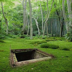 Treasure Hunter 3D detector bunker finding world war II two view site