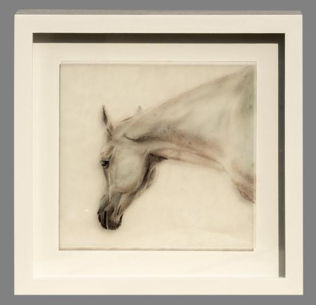 Framed Horse Study