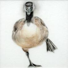 Balancing Goose