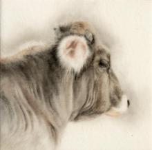 Fuzzy Ear Cow