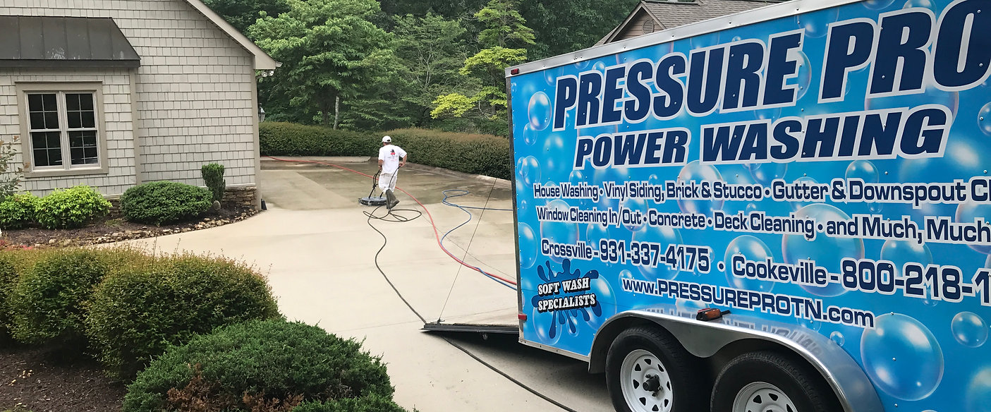 Roof Cleaning Roof Mold Removal