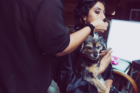 Hair and makeuo before Pet photography photoshoot at Vilija Skubute studio with Ami and dog Kiri