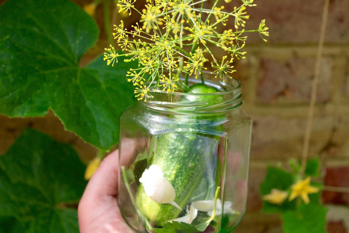 Autumnal Pickling Masterclass