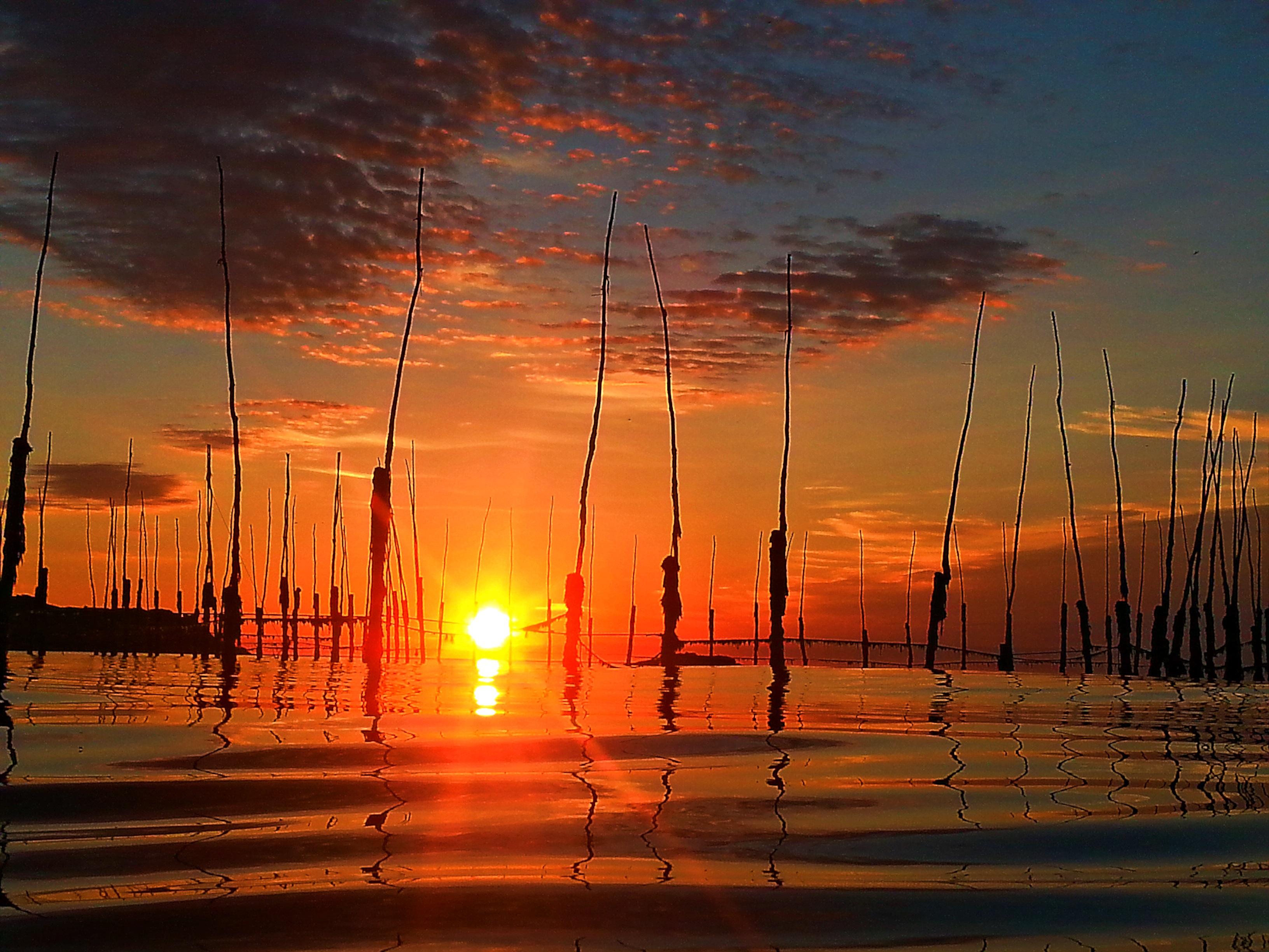 GM sunrise1