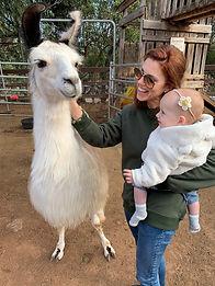 Llama + Josie.jpg
