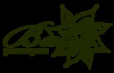 Logo3o.png