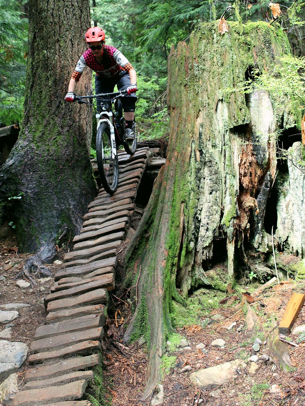 mountain bike Liv / giant north vancouver. nsmba trail team pangor