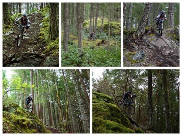 Duncan BC Maple Syrup endless biking mountain bike
