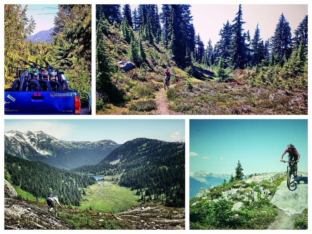 Whistler apline mountain bike ride. endless biking descent
