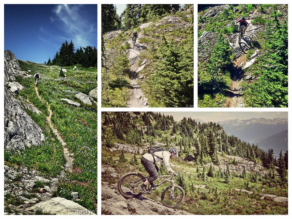 Whistler alpine mountain bike ride. WORCA