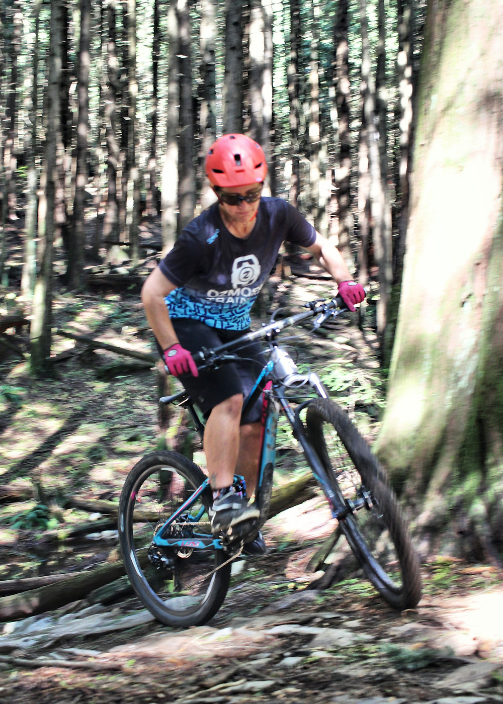 Giant Liv pique mountain bike north shore trails nsmba
