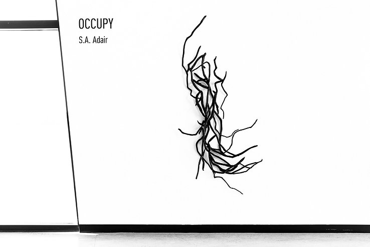 Occupy-0307.jpg