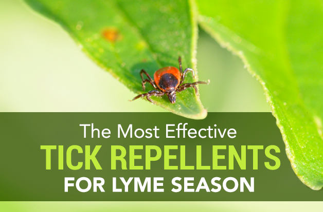 the most effective tick repellents