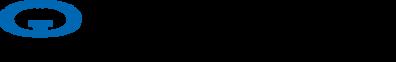 GIG logo_293 process & blk.png