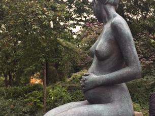 האם אתם רוצים לדעת כיצד ניתן לטפל בהריון ולידה בצורה מושכלת כך שהליווי ההומיאופתי נעשה בפשטות ובקלות
