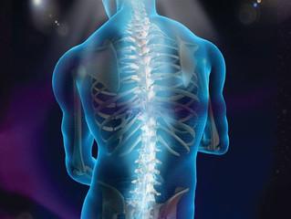 Quiropraxia e Flexibilidade