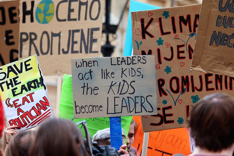 school-strike-4-climate-4057783_1920.jpg