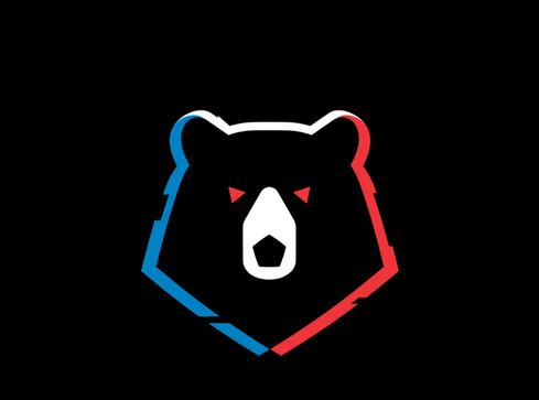 Фото для логотипа Российской премьер-лиги