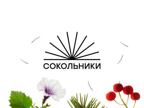 Фото для сайта парка «Сокольники»