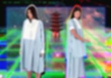 4 - Seiryu & Amsonia no text.jpg