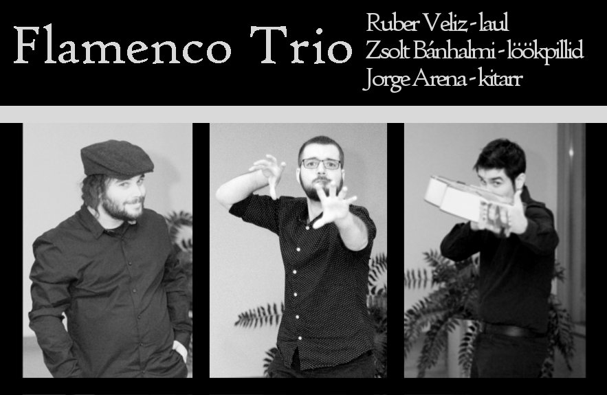 20190210 Flamenco Trio Tourest2