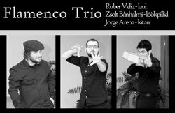20190210 Flamenco Trio Tourest2