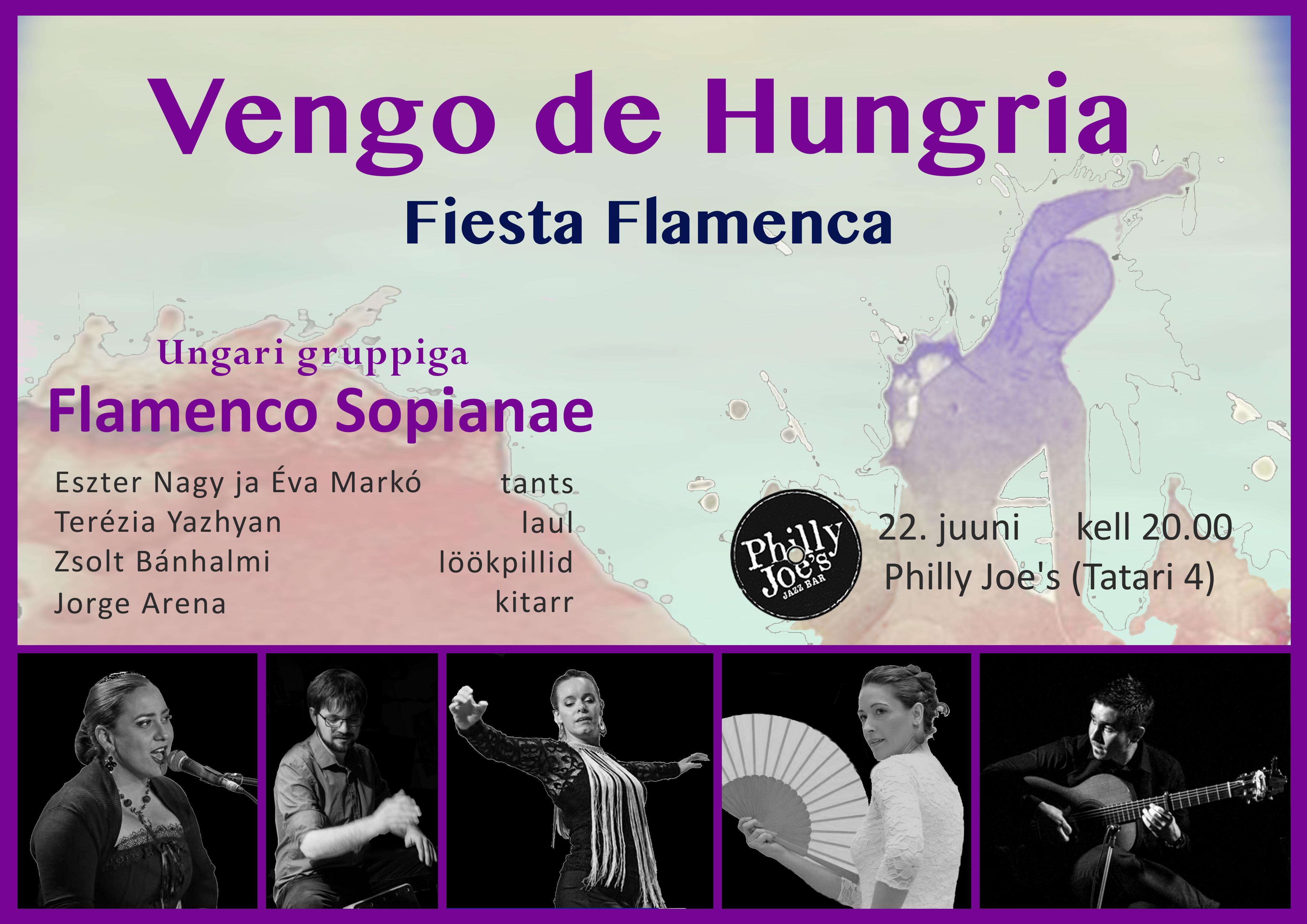 20170622 Poster Flamenco Sopianae concer