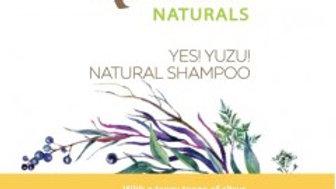 Natural Shampoo - Yuzu