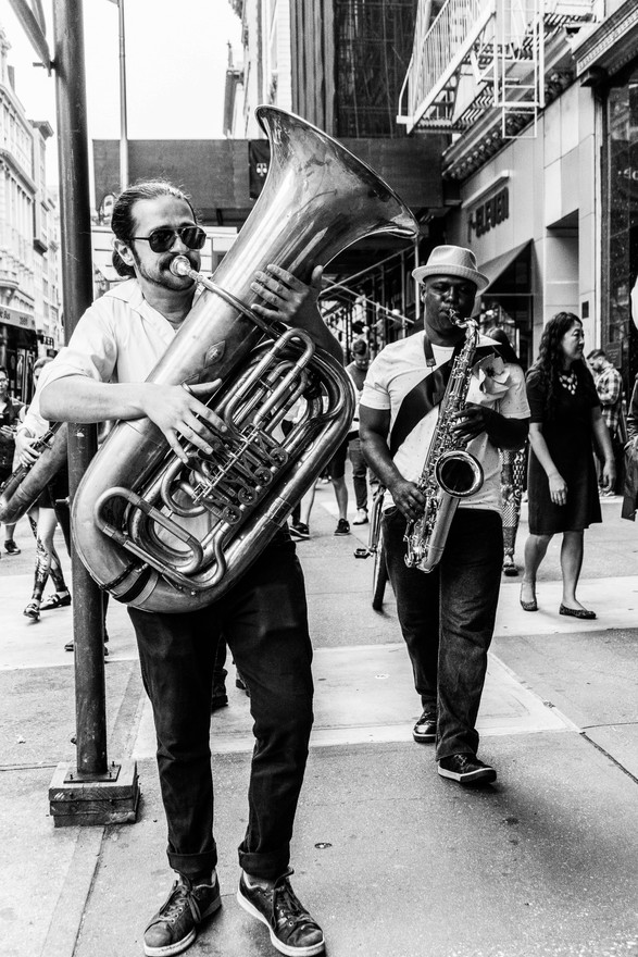 HORNS ON FIFTH AVE