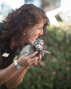 Cindi and ferret.jpg